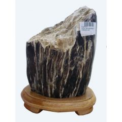 Versteinertes Holz, Dekostück mit Holzständer