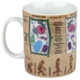Becher Wissensbecher Bio Biologie Kaffeetasse Tasse Kaffee Teetasse Porzellan Pott Henkelbecher bunt