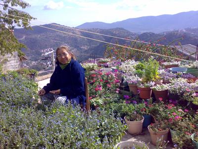 Miniatur-Blumen-Garten